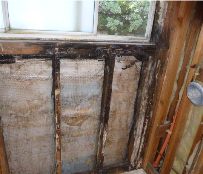 Long term bathroom mold mitigation and remodel  Before